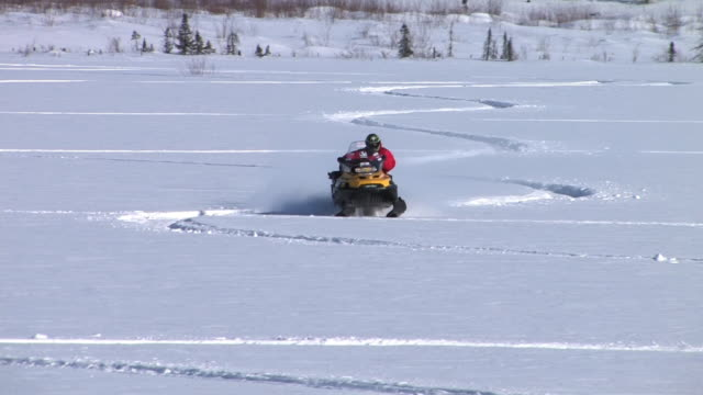 a man is driving a snowmobile in bettles, alaska, with high snow and sunning day - zigzag stock videos & royalty-free footage