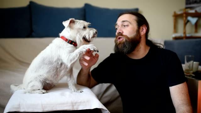 l'uomo sta giocando con il suo cane - one man only video stock e b–roll