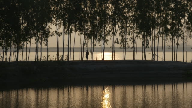 A man is silhouetted against the sunrise as he crosses a levee of bamboo on the shore of the River Jamuna in Bangladesh