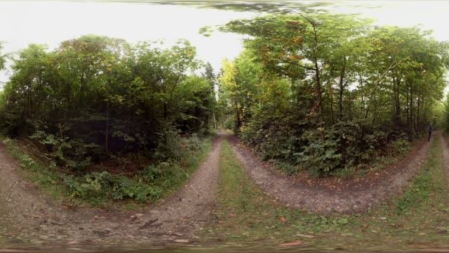 360 VR, man jogging along forest track