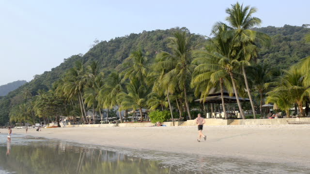 Man jogging at sandy beach with palm trees