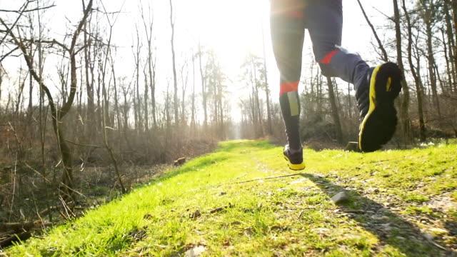 hd-slow-motion: mann joggen in der natur - menschliches knie stock-videos und b-roll-filmmaterial