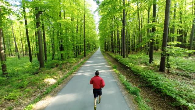 vidéos et rushes de hd heli: homme jogging sur une route à travers la forêt - route à une voie