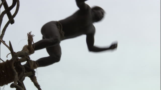 Man jumps off wooden tower during land diving ritual, Pentecost, Vanuatu