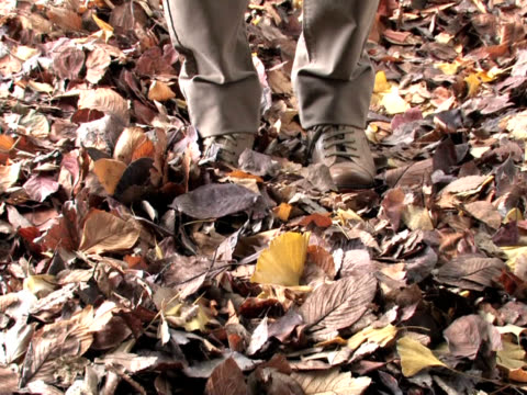 vídeos y material grabado en eventos de stock de man kicking fallen leaves - sólo hombres jóvenes