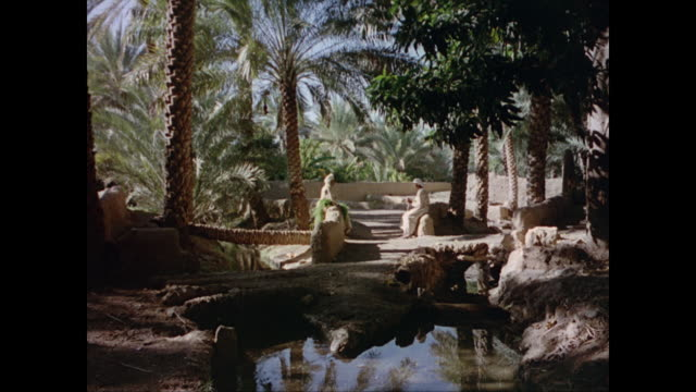 Man leading a camel train / desert mountains oasis town of Al Buraimi / two men talking in lush oasis