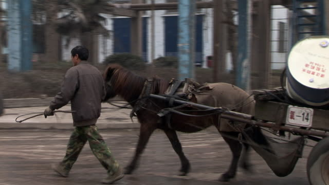 WS Man leading small horse pulling cart filled with large metal drums/ Dongguan, China