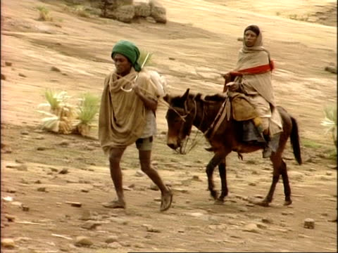 ms man leading woman riding mule over rocky ground, ethiopia, africa - mule stock videos & royalty-free footage