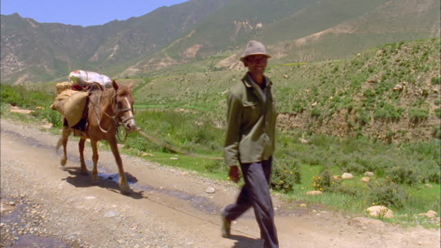 man leads mule carrying saddlebags along road, mountain range in background available in hd. - maultier stock-videos und b-roll-filmmaterial