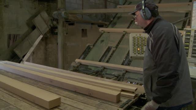 ms man loading planks onto conveyor at sawmill / virton, luxemburg, belgium - ohrenschützer stock-videos und b-roll-filmmaterial