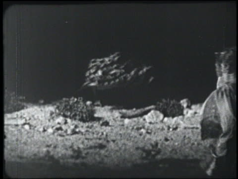 b/w 1954 rear view man (peter graves) looking at giant lizard with flicking tongue - 1954 stock videos & royalty-free footage