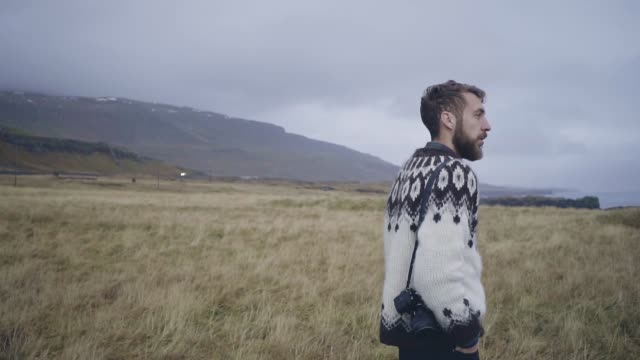 man looking at scenic view of meadow near the beach in iceland - photographer stock videos & royalty-free footage