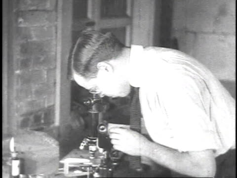 vídeos de stock, filmes e b-roll de 1923 montage man looking in microscope with his hand moving slide under the lens / united states  - lâmina de microscópio