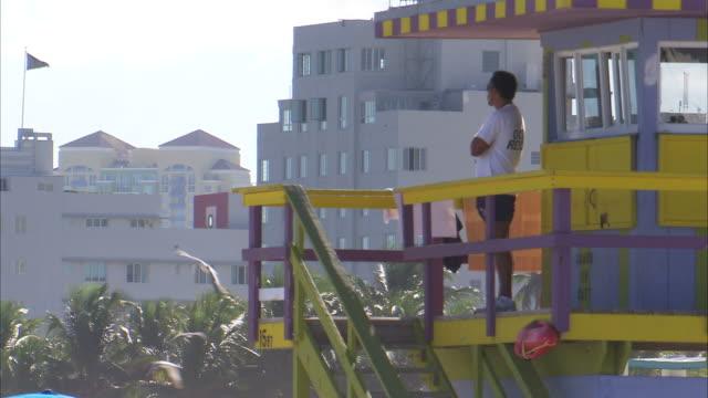 ws man looking over beach from lifeguard tower / miami, florida, usa - cabina del guardaspiaggia video stock e b–roll