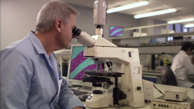 ms, zi, cu, man looking through microscope in laboratory, london, england - centro di ricerca video stock e b–roll