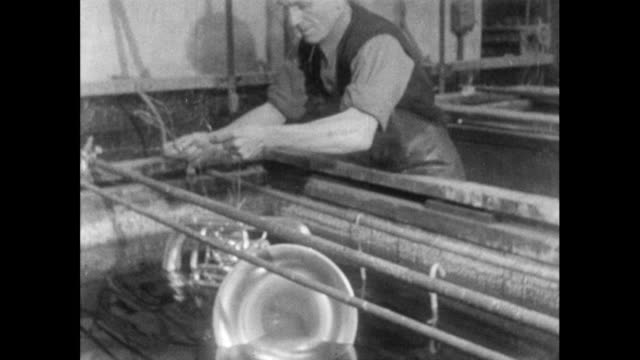 man lowers euphonium into plating bath; 1956 - einzelner mann über 40 stock-videos und b-roll-filmmaterial