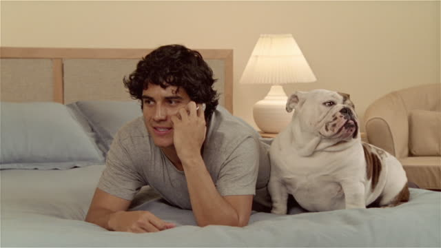 CU, Man lying on bed, talking on mobile phone, English bulldog assisting