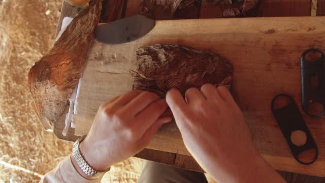 man making handmade cigar at cuba. directly above. viñales valley, cuba - tradition stock videos & royalty-free footage