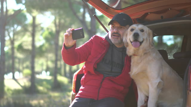 man making selfie with his dog on the car trunk - pet owner stock videos & royalty-free footage