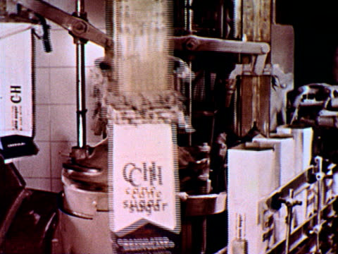 vidéos et rushes de / man monitoring machine / machine filling bags of sugar / assembly line of canning machine. - aliments et boissons