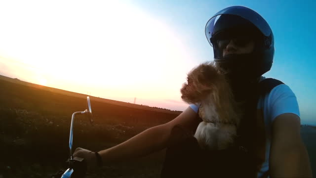 man motorcyclist with dog in sunset - motorcycle stock videos & royalty-free footage