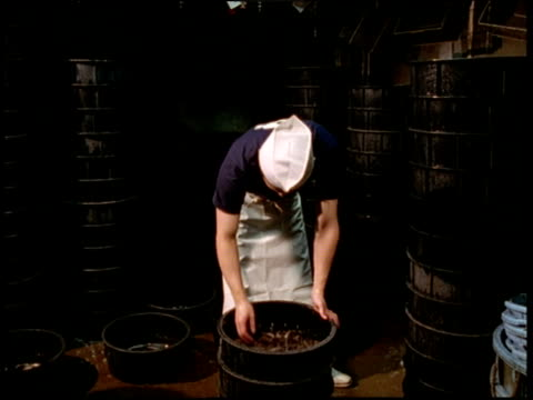 man moves buckets of loach (small fresh water fish renowned for digestion and virility) in restaurant tokyo - masculinity stock videos & royalty-free footage
