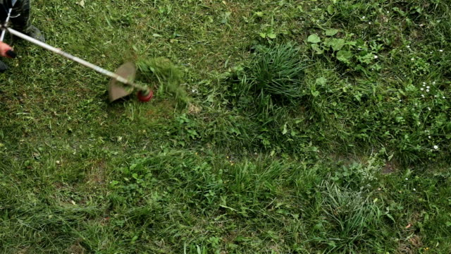 man mowing grass. - mowing stock videos & royalty-free footage