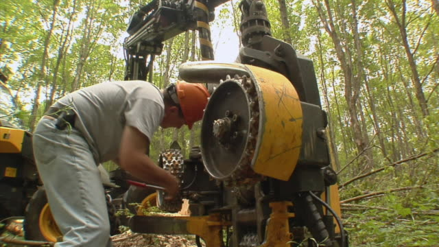 MS, Man oiling tree harvesting machine in forest, Manistique, Michigan, USA