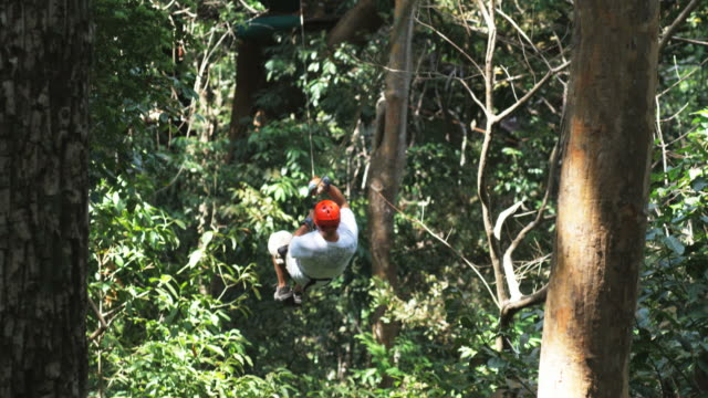 man on a zip line through the trees - zip line stock videos & royalty-free footage