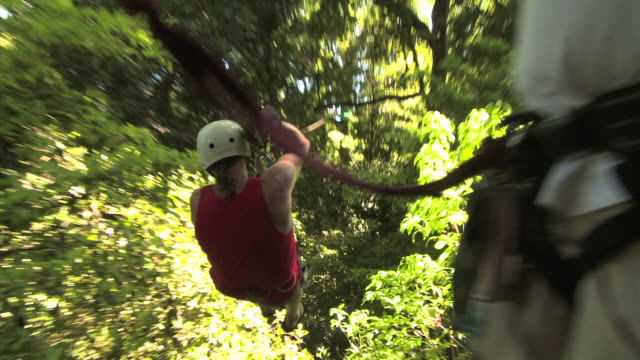 man on a zip line through the trees - andere clips dieser aufnahmen anzeigen 1168 stock-videos und b-roll-filmmaterial