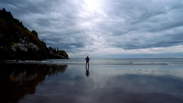 ws, man on beach, rear view, long beach, washington, usa  - norra stilla havet bildbanksvideor och videomaterial från bakom kulisserna
