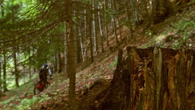 下り坂の男は森をトラフ - クロスカントリーサイクリング点の映像素材/bロール
