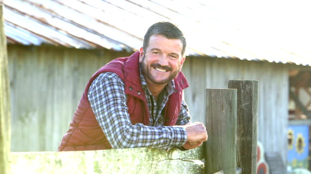 man on farm outside barn, walks up to wooden fence - rancher stock videos & royalty-free footage