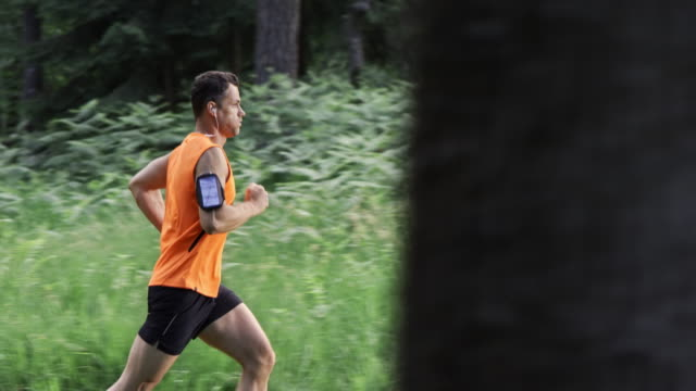 slo mo ds man on his daily run through forest - vest stock videos & royalty-free footage