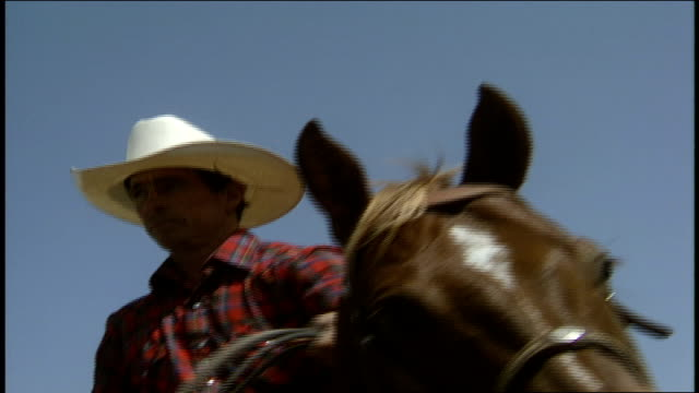 man on horse back with cowboy hat and twirling lasso - cowboy hat stock videos & royalty-free footage