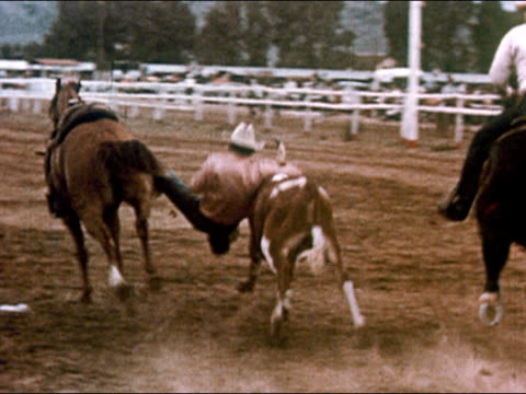 1950 man on horseback grabbing onto bull in rodeo / gunnison, colorado / audio - gunnison stock videos & royalty-free footage
