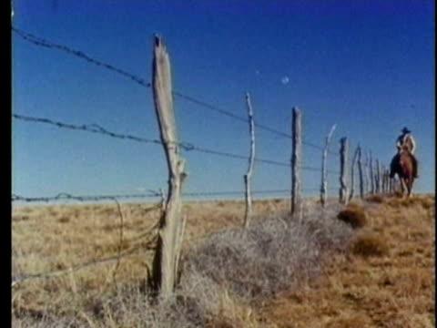 vídeos y material grabado en eventos de stock de 1959 reenactment la ws man on horseback riding alongside fence in 19th century midwest plains  - expansión hacia el oeste