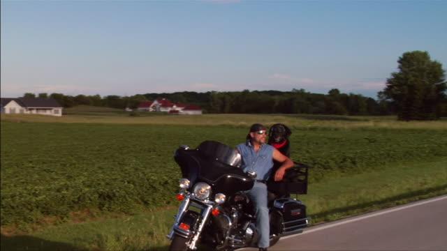 vídeos y material grabado en eventos de stock de ms pan man on motorcycle parked on roadside with dog on back/ zi ws man on motorcycle with dog/ appleton, wisconsin - motociclista