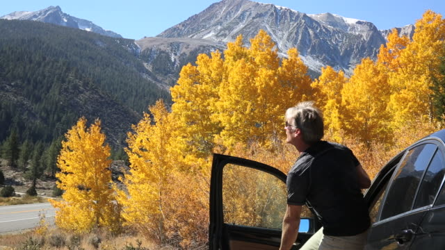 man opens car door, takes picture down mountain road, autumn - aspen tree stock videos & royalty-free footage