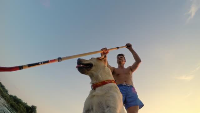 la ws mann mit seinem hund stehpaddeln - surfbrett stock-videos und b-roll-filmmaterial