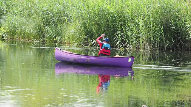 man paddling down the river brathay in ambleside in a canadian canoe, lake district, on july 19, 2021 in ambleside, uk. - purple stock videos & royalty-free footage