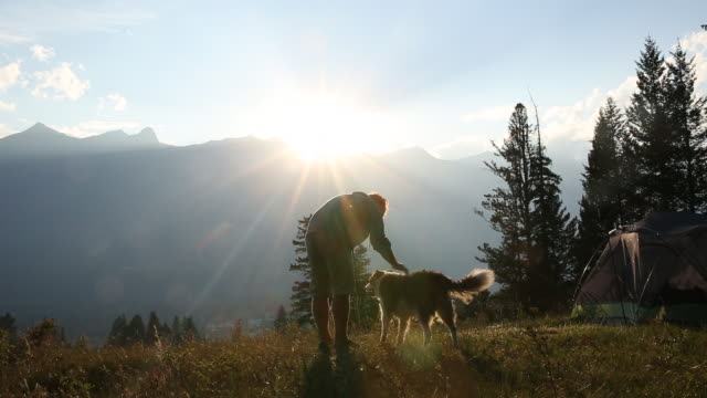 Man pats dog by tent, in mountain meadow