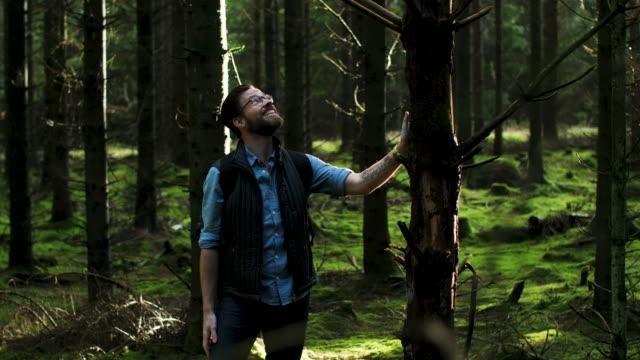 vidéos et rushes de un homme tapotant un arbre - barbe