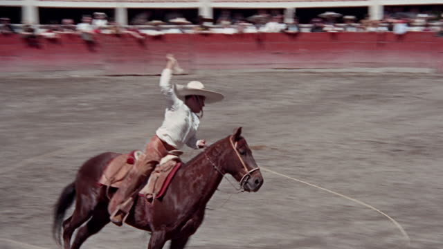 man performing at plaza making maneuvers on horse with rope - rodeo stock videos & royalty-free footage