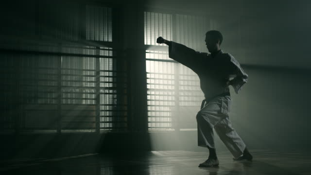 vídeos de stock e filmes b-roll de man performing karate - artes marciais