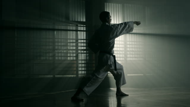 man performing karate - martial arts stock videos & royalty-free footage