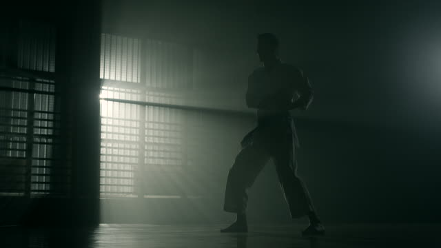 Man performing karate