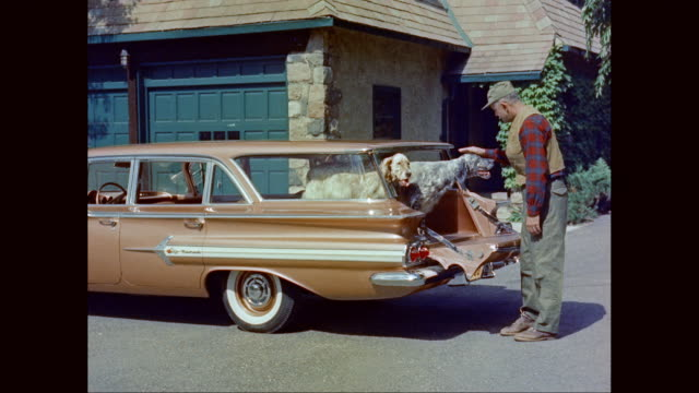 ms man petting dog and closing station wagon back door / united states - limousine stock-videos und b-roll-filmmaterial