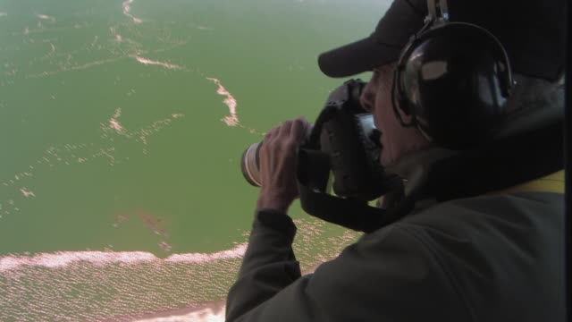 CU, Man photographing flock of lesser flamingos (Phoenicopterus minor) in Lake Naivasha from plane, Kenya