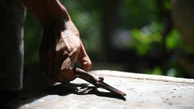 vídeos y material grabado en eventos de stock de un hombre recogiendo unas tijeras de jardinería para cortar el árbol de los bonsais. - pinaceae